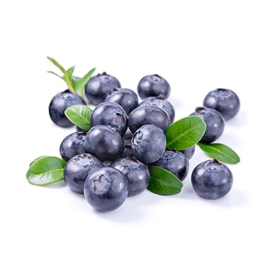 Blueberries Deshidratados